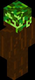 LeafWarrior254