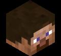 Skin minecraft di Pokeloking