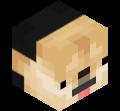 maxgamer24341's avatar'