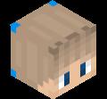 Skin minecraft di _GameRule_
